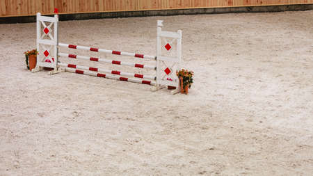 equitation: Equitation. Obstacle for jumping horses. Riding competition.