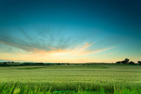 Evening landscape. Beautiful sunset or sunrise over green summer field meadow with dramatic red sky, Stockfoto