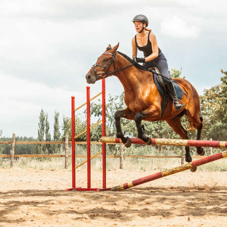 salto de valla: Active woman girl training jockey riding horse jumping over fence. Equestrian sport competition and activity