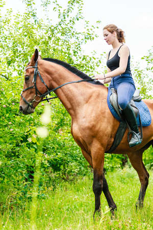 equitation: Active woman girl jockey training riding horse. Equitation sport competition and activity. Stock Photo