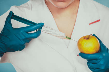 modification: Scientist doctor injecting apple with syringe. Chemist holding genetically modified fruit. GM food modification.