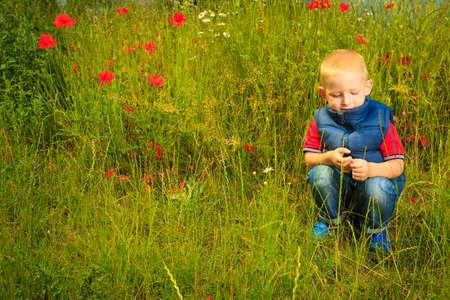 educacion ambiental: Ni�o que juega en el prado verde examinando las flores del campo. La educaci�n de la conciencia ambiental.