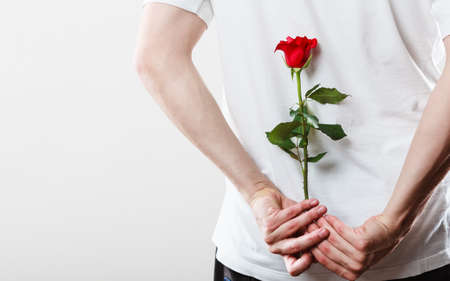 engagement: Anniversary proposal and engagement idea. Part body man with one red rose behind back. Love concept.