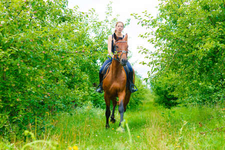 Active woman girl jockey training riding horse. Equitation sport competition and activity. Stock Photo