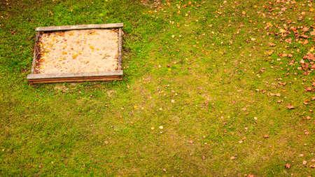 sandpit: Empty sandbox sandpit in autumn fall season. Tranquil scene.