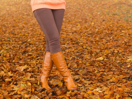 fall winter: Closeup of woman legs in brown boots. Girl in autumn park forest. Fall winter fashion. Stock Photo