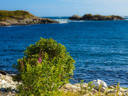 oceanscape: The rocky coast landscape of southern Norway with an ocean view in Rogaland county Norway. Stock Photo