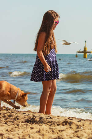 carelessness: Connection between animals and kids concept. Sportive mixed race dog and girl kid playing together. Active child with puppy having fun.