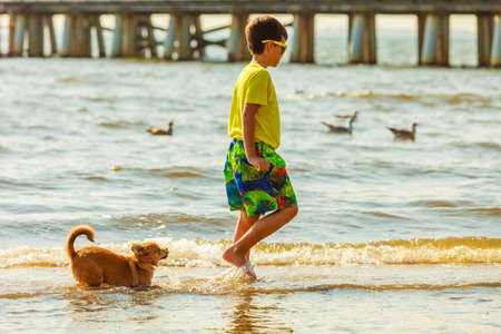 carelessness: Connection between animals and kids concept. Sportive mixed race dog and boy kid playing together. Active child with puppy having fun. Stock Photo