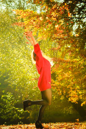 youthful: Nature outdoor vegetation joy entertainment relax concept. Lady playing with leaves. Youthful girl tossing around dried foliage having fun in autumnal woodland. Stock Photo