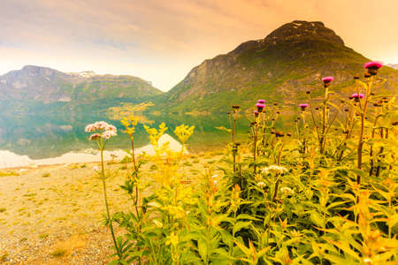 jostedalsbreen: Tourism vacation and travel. Mountains landscape and fjord in Jostedalsbreen National Park, Oppstryn (Stryn), Sogn og Fjordane county. Norway Scandinavia.