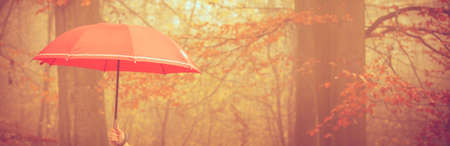 protection concept: Nature outdoor weather fun protection rain cozy concept. Person holding an umbrella above.