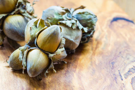 filbert: Healthy food full of fatty acids, organic nutrition. Hazelnuts cluster filbert nuts in hard shell on rustic old wooden table. Stock Photo