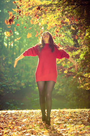 tossing: Girl tossing up leaves. Young woman in autumnal forest playing with foliage. Nature outdoor relax concept.