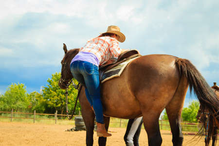 Taking care of animals, horsemanship, equine concept. Cowgirl getting horse ready for ride on countryside. Stock Photo