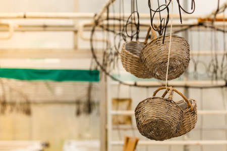Handmade objects concept. Baskets made of wicker hanging under ceiling in greenhouse