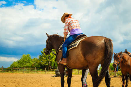 Taking care of animals, horsemanship, western competitions concept. Cowgirl doing horse riding on countryside meadow, sunny day outside Stock Photo