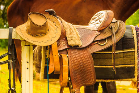 Cowboy hat, saddle strings, skirt, horse competition equipment. Taking care of animals concept