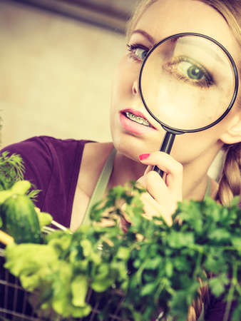 Buying healthy dieting food concept. Woman in kitchen having many green vegetables looking through magnifier at shopping basket trolley. Stock Photo