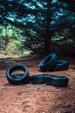 landfills: Many old car tires lying in dark forest. Environmental pollution, illegal landfills concept.