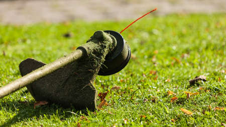 Brushcutter mower lying on green grass. Seasonal garden cleaning moder objects concept. Stock Photo