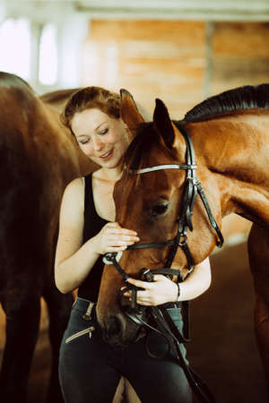 Animal, horsemanship concept. Woman hugging brown horse in stable. Natural sunlight