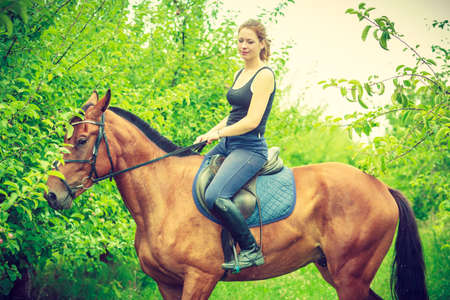 Animal, horsemanship concept. Young woman sitting and ridding on a horse through garden on sunny spring day Standard-Bild