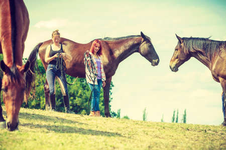 Animal and human love, equine concept. Two women relaxing with horses on meadow