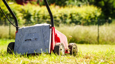 Gardening, garden service. Old lawn mower cutting green grass in backyard. Mowing field with lawnmower in sunny day.