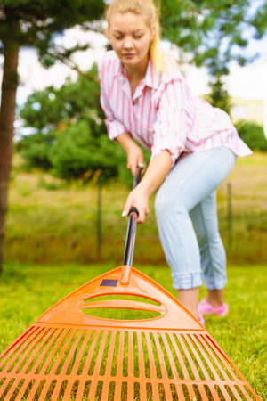 Gardening. Female person young woman raking green lawn grass with rake tool on her backyard, unusual wide angle view Stock Photo