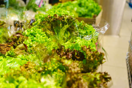 Detailed close up, endive lettuce on shop shelf. Healthy nutrition and nutritious food full of vitamins concept.