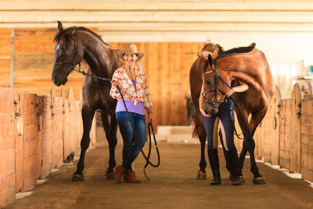 Western ride, relations through passion concept. Cowgirl in cowboy hat and woman jockey walking with horses in stable Imagens
