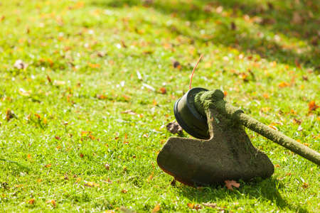 Brushcutter mower lying on green grass. Seasonal garden cleaning moder objects concept. Stockfoto