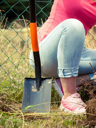 Person gardener digging hole in ground soil with shovel. Yard work around the house Stock Photo