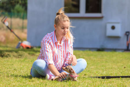Woman playing with little pinscher ratter prazsky krysarik crossbreed small dog outside on grass during summer spring weather