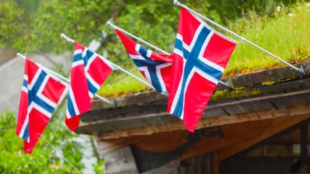 Norwegian flags on typical country house with grass on the roof