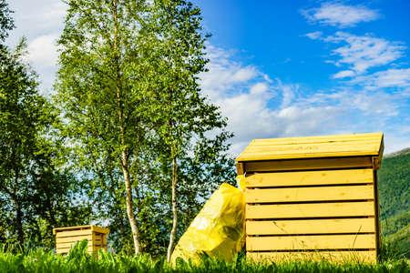 Picnic site rest stop area with garbage bin in norwegian nature. Scandinavia Europe.