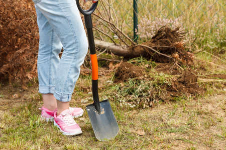 Woman gardener digging hole in ground soil with shovel. Yard work around the house Stock Photo
