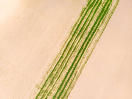 Aerial top down view. Crop agricultural fields. Rows of soil before planting, ploughed field, spring or autumn season landscape. Nature background, farm pattern.