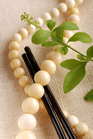Ivory necklace with wooden sticks and green leaves Stock Photo - 13497071