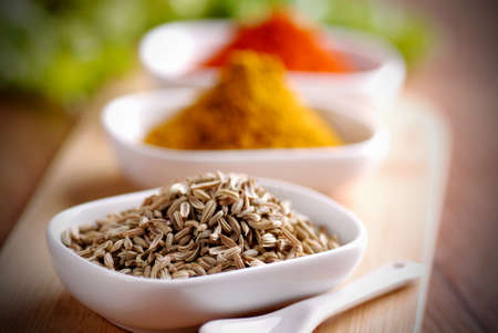 fennel seed: fennel seed and other spices in the bowl