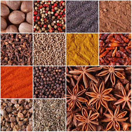 spices and herbs, collage composed of thirteen photographs photo