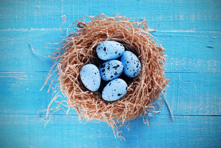 decorated eggs: decorated eggs for Easter into the nest Stock Photo
