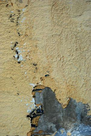 broken wall: la pared rota en el primer plano