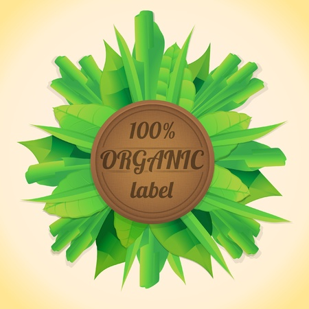 green leaves label Stock Vector - 19909135