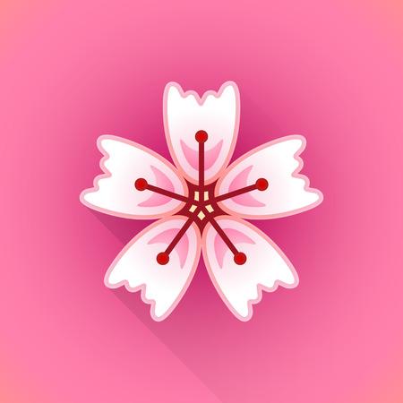 flor de sakura: vector pink color flat design japan cherry sakura flower illustration isolated red background long shadow