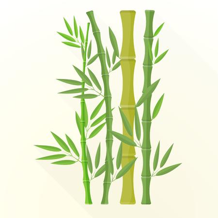 japones bambu: vector de color verde las plantas de diseño plano de bambú con hojas ilustración aislado fondo claro larga sombra