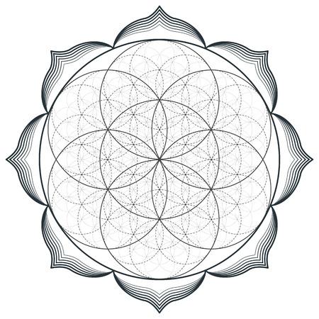 벡터 윤곽선 단색 디자인 만다라 신성한 형상 그림 생명의 꽃의 씨앗 꽃은 고립 된 흰색 배경 일러스트