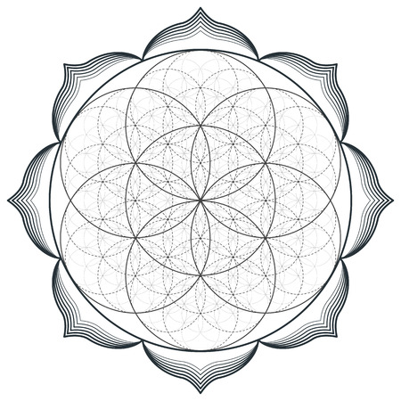 vector contour monochrome design mandala sacred geometry illustration seed flower of life lotus isolated white background