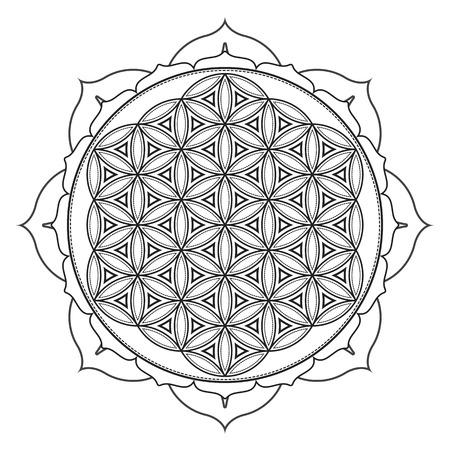 벡터 윤곽선 단색 디자인 만다라 신성한 형상 그림 생명의 꽃 로터스 격리 된 흰색 배경